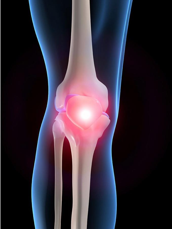 картинка колена человека независимая авторская анимация
